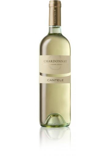 Chardonnay IGT Salento