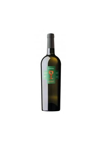 Candòra Chardonnay I.G.T Salento Bianco